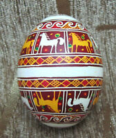 Pysanka Ukrainian real chicken Easter egg Hand made by artist Western Ukraine