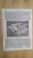 1872 Illustrazione Popolare: Veduta di Teatro di Siracusa