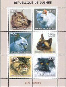 Guinea 2002 Domestic Cats/Animals/Nature/Pets 6v sht (s5037)