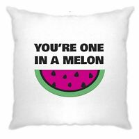Valentines Day Cushion Cover You're One In A Melon Joke Funny Fruit Pun