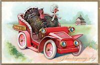Tuck's Anthropomorphic Turkeys Driving Antique Car Thanksgiving Postcard 123 AP