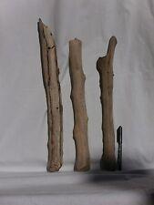 XL legno di mare lungo lampada (895) fai da te bricolage shabby chic deco arte