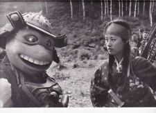 PF Turtles III ( Raphael , Vivian Wu )
