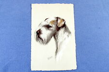 1910 Sealyham Terrier Dog Art Postcard # 2 Published by Stehli in Switzerland