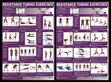 RESISTANCE TUBING EXERCISES Professional Fitness Gym Wall Charts 2 POSTER SET