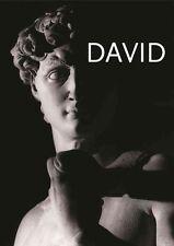 Michelangelo's David by Aurelio Amendola, Antonio Paolucci (Hardback, 2014)
