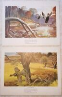 Remington Sportsmen Library Of Fine Art Prints Hunting Black Duck Ruffed Grouse