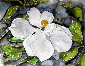 magnolia tree flower flowers botanical watercolor painting art print white black