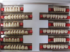 Dental Complete Denture False Teeth #425 Synthetic Resin Teeth A2  3-Set Teeth