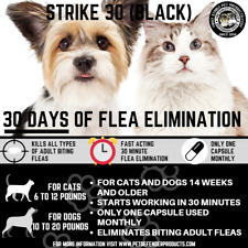 Super Flea killer for cats and small Dogs one use lasts up to 30 days! 6 uses