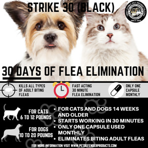 Flea killer for cats and small Dogs, one use lasts up to 30 days! 3 uses