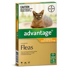 Advantage for Kittens & Small Cats up to 4kg (Orange) (1 pipette) Cat Cats