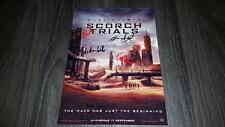 """THE MAZE RUNNER 2 : SCORCH TRIALS PP SIGNED 12""""X8"""" A4 PHOTO POSTER DYLAN O'BRIEN"""