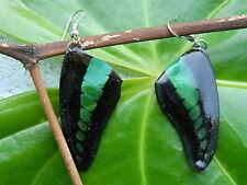 ONG REAL COMMON BLUEBOTTLE Butterfly Wings Earring Jewelry 925Sterling Hook