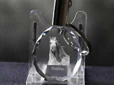 Araberpinto, Pferd Kristall rund Schlüsselbund, Crystal Animals CH