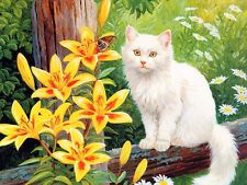 Oil Painting Canvas Print Picture Animals White cat on canvas L030