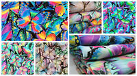 Nature Studies by Robert Kaufman 100% cotton digitally printed fabric  Butterfly
