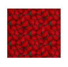 Fabric Traditions - Packed Red Strawberry - Cotton YARD