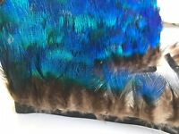 Natural Blue Peacock Plumage Natural Feather Fringe Ribbon Trim (price for 30cm)