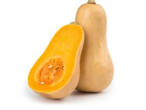 """Pumpkin Seeds """"Butternut"""" (20 Seeds) Easy To Grow Garden Vegetable"""