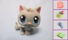 Littlest Pet Shop Cat Baby Kitten 66 and Free Accessory Authentic Lps