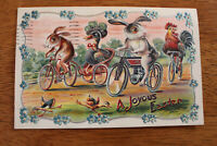 1911 Embossed Easter Postcard - Rabbits & Rooster Riding Bicycles Germany