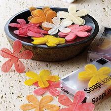 Daisy Soap Leaves Set of 20 Natural Honey Formula Show Stopper Designer Soap