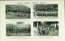 1902 PRINT NORTHERN NIGERIA REGIMENT LAGOS WEST AFRICAN FRONTIER FORCE HASLEWOOD