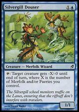 4x TUFFATORE DELLA BRANCHIARGENTATA - SILVERGILL DOUSER Magic LRW Mint