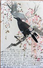 Japan/Japanese/French 1904 Color Litho Artist-Signed Postcard: Black Bbird, Tree