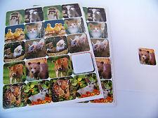 Stickers Baby Farm Animals Forest Animals Scrapbooking -120 ct.
