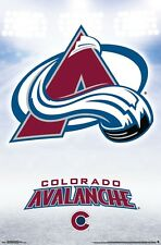 COLORADO AVALANCHE - LOGO POSTER 22x34 - NHL HOCKEY 15829