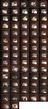 Afrika Safari Kenia 1969 Privatfim 16mm Film.Einwohner,Kultur u.a.-Antique Film
