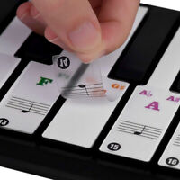 Removable 49/54/61/88 Keyboards Transparent Fresh Sticker Piano Keys Stickers