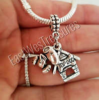Charlie brown, Snoopy, Peanuts Dog charm Pendant For bracelet necklace-European