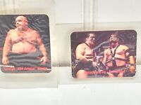 2 WWF WWE  Borden Titan Sports Tag Team of the Century 1988 Cards Stickers 23137