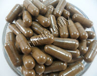 360 Caps. 500 mg. Ganoderma Lucidum LINGZHI REISHI MUSHROOM REISHI
