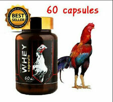 Supplement Rooster Protein Capsule food Thai Popular Gallos Thunder Whey Pigeon