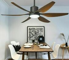 Ceiling Fan House Luxury Durable Glass Lampshade Included Remote Shinning Blades