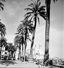 ESPAGNE c. 1955 - Bateaux Rue animée Palmiers Sitges - Négatif 6 x 6 - Esp 230