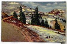 Loveland Pass, Elev 11,992 Ft. Timberline in the rockies Postcard C681