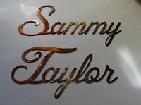 "Personalized custom Name in Cursive Style Up to 12 letters 8 "" tall"