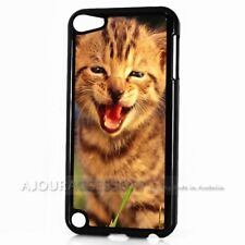 ( For iPod Touch 6 ) Back Case Cover AJ10647 Cute Pussy Cat