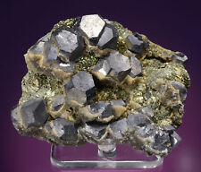 Galena on Marcasite  Viburnum Trend, Reynolds/Iron Counties, Missouri 809003