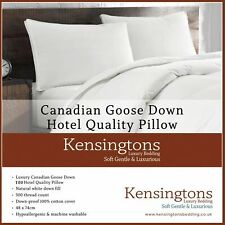 Kensingtons® 2 Pillows Luxury Canadian Goose Down Pillows  Power Hotel Quality