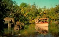 Vtg 1960s Disneyland Postcard Elephant Bathing Pool - Adventureland Unused 1-284