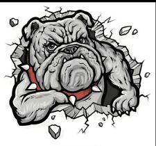 Bulldog Aufkleber für Auto, Motorrad NEU
