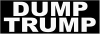 DUMP TRUMP BUMPER STICKER DECAL ANTI DONALD TRUMP PRESIDENT 2020 DEMOCRAT BERNIE