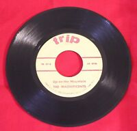 Magnificents-Up On The Mountain -Trip Label 45RPM  DooWop 1950's
