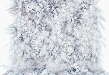 Gigante Mural de Pared Foto Wallpaper 368x254cm Blanco Diseño Floral Jardín Flores